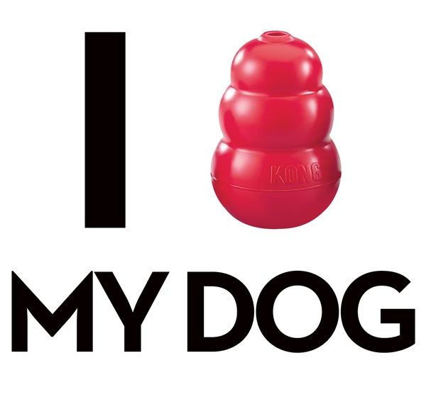 We love our kongs!