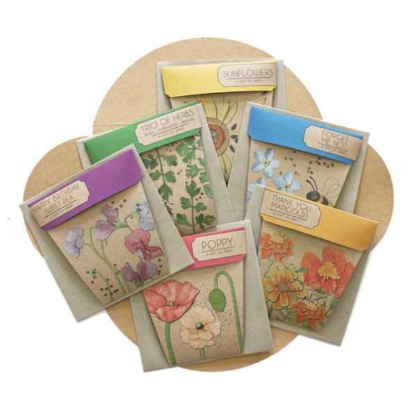 Gift of Seeds Set of 6 packs