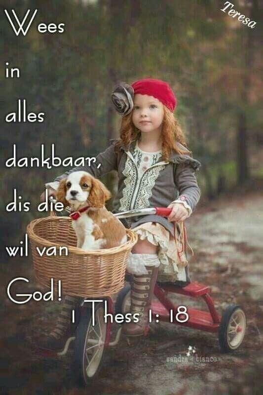 Wees in alles dankbaar, dis die wil van God! 1 Thess 1 : 18 Dankie Here vir alles wat U vir my gee, net om vanoggend op te kon staan, asem te haal en nog n dag te kan aanskou,  is n voorreg.