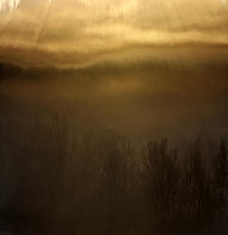 """Dreaming"" by: Ondrej Pakan"