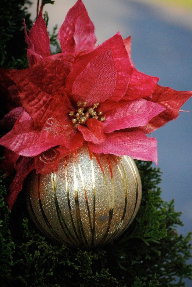 Family Dollar has some great resources for Holiday Decorating Tips and How-To's on their blog.
