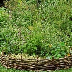 Semena léčivek a bylinek