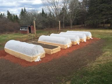 5 Reasons You Should be Growing in Raised Beds