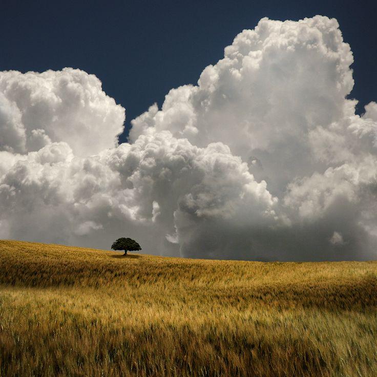 Contrast - Blues, golden, clouds