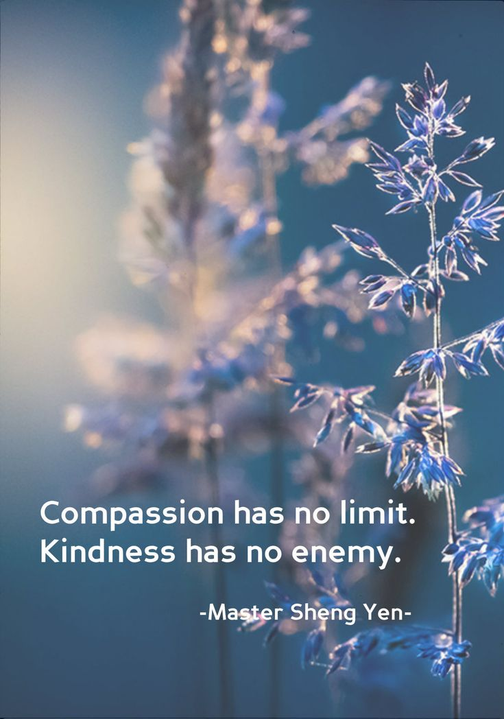 Draw & Wings. — Compassion has no limit. Kindness has no enemy....