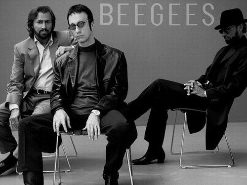 Love them!Bees Geese, Full Album, Awesome Gibbs, Gees Music To My Ears, Gees Greatest, Geese Greatest, Gees Logo, Bee Gees, Beautiful Music