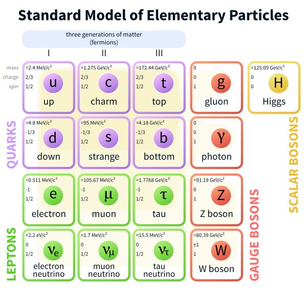 Elementary particle - Wikipedia