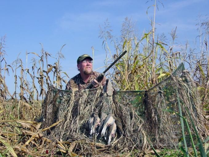DIY Dove Hunting: 5 Things You Need to Attract More Birds | Outdoor Life