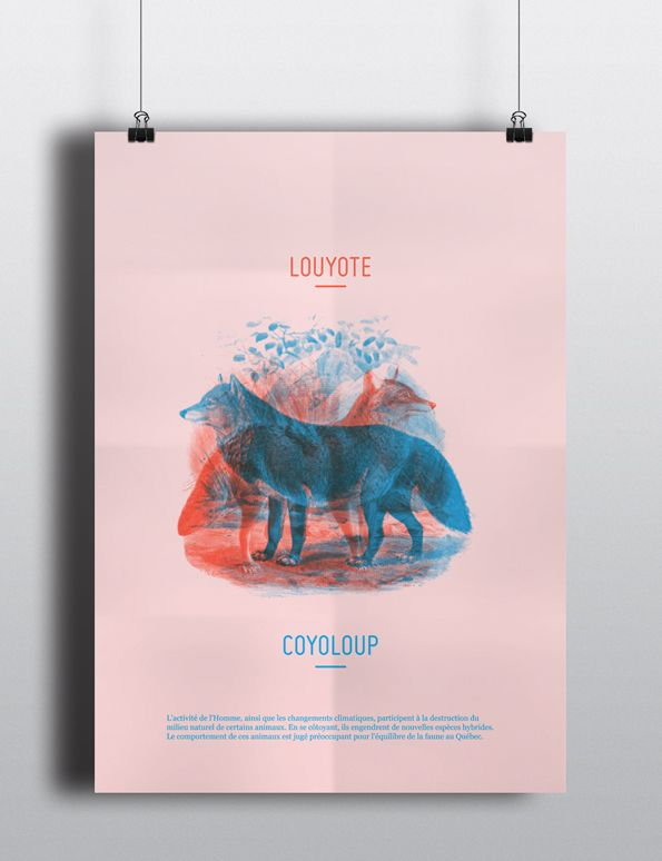 Endangered Species by Maxime Francout, via Behance