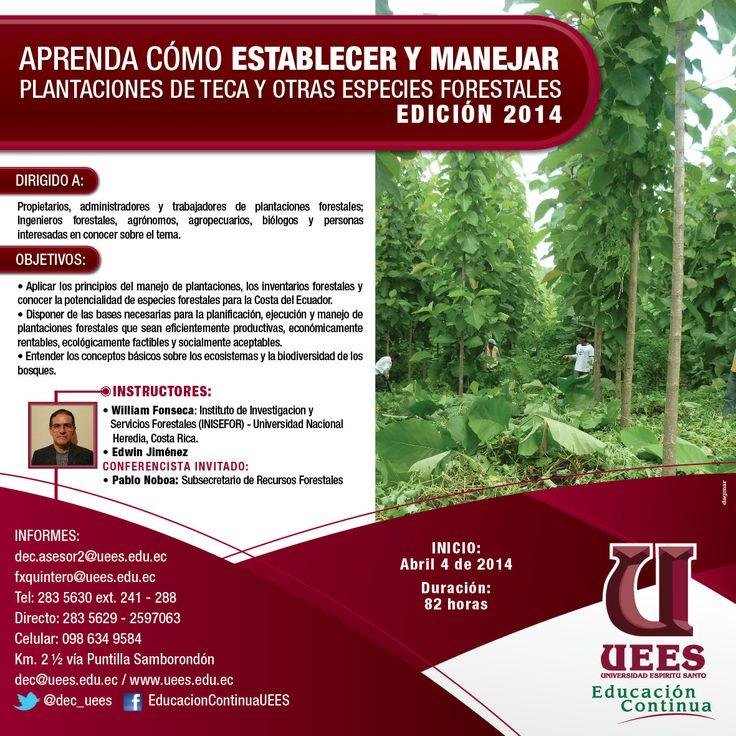Cómo Establecer y Manejar Plantaciones de Teca y otras Especies Forestales, @UEES - http://www.titulate.com/nutricion-ciencias-agricolas/como-establecer-y-manejar-plantaciones-de-teca-y-otras-especies-forestales_575