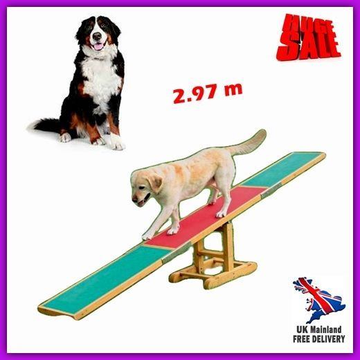 Pet Trainer Outdoor Seesaw Dog Agility Exercise Balance Activity Centre Play 3m