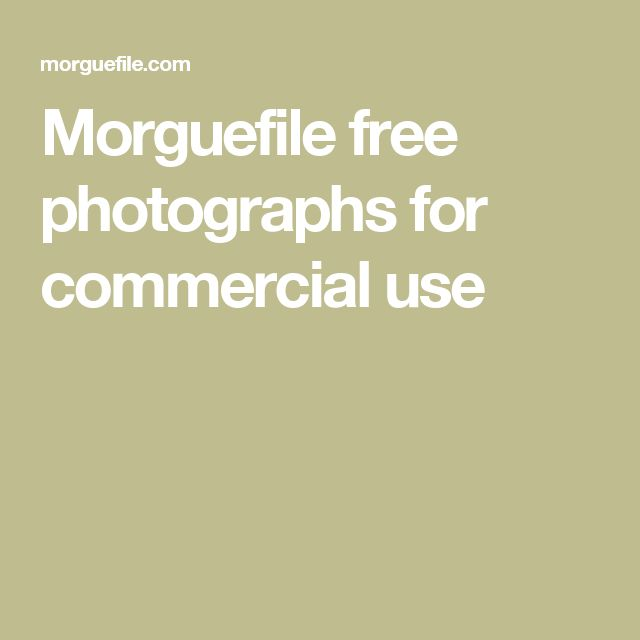 Morguefile free photographs for commercial use