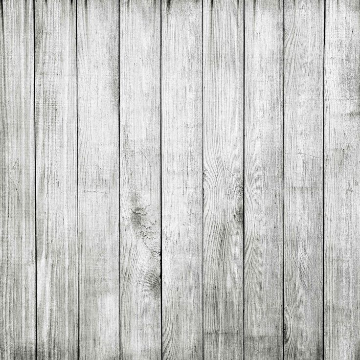 light grey wood photography - photo #1