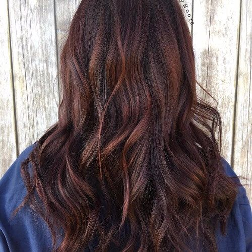 Chocolate Red Hair                                                       …