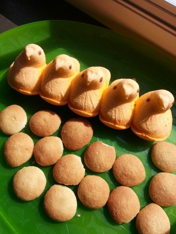 Quail (peeps) and Manna (vanilla wafers)