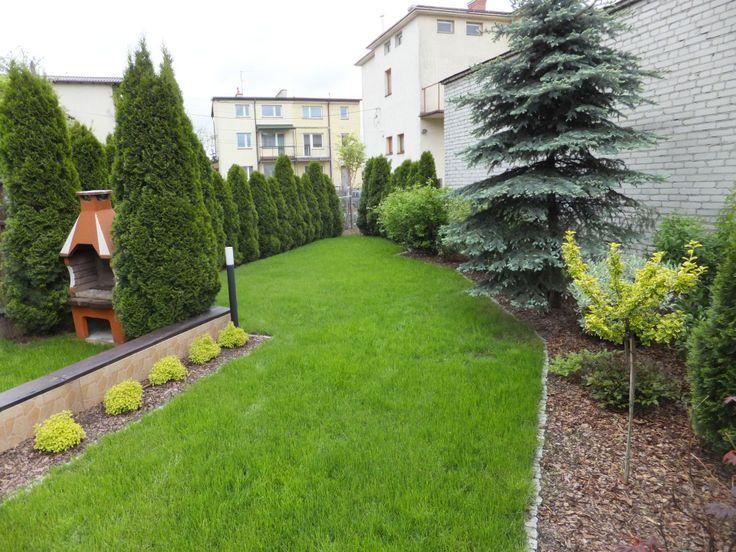 Nowy trawnik i rabaty z roślinami.