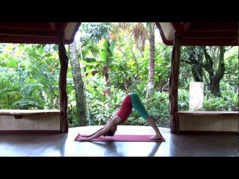 Traditional Sun Salutation - YouTube. Poses broken down first 4:15, then goes through fluid sequence.