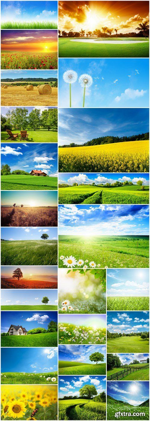 Beautiful Field - 25 HQ Images