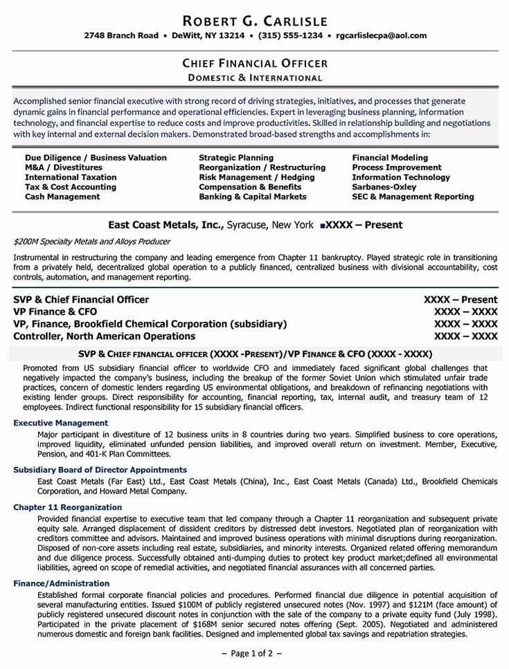 20 chief financial officer resume job resume samples