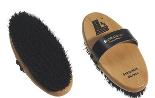 10 brilliant body brushes you need in your horse's grooming kit https://trib.al/A8qov1i