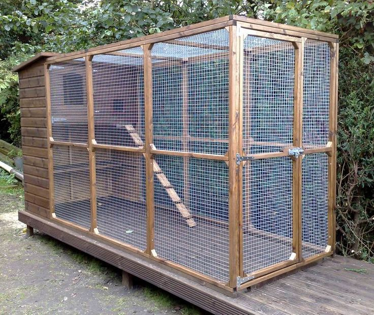Large Outdoor Cat Enclosure | Outdoor Cat Runs
