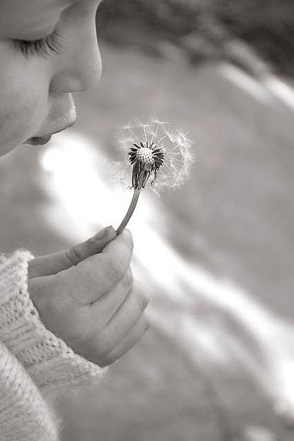 """fairy wish"" @gracia fraile fraile fraile fraile Gomez-Cortazar | Grace's Sweet Life #kids #photography"