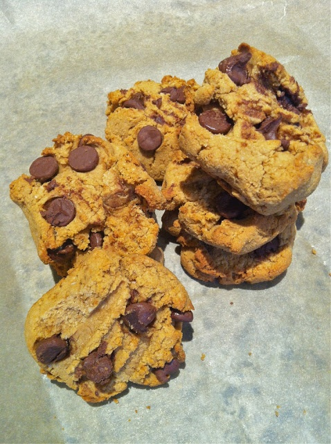 delicious wife: yummy paleo chocolate chip cookies!