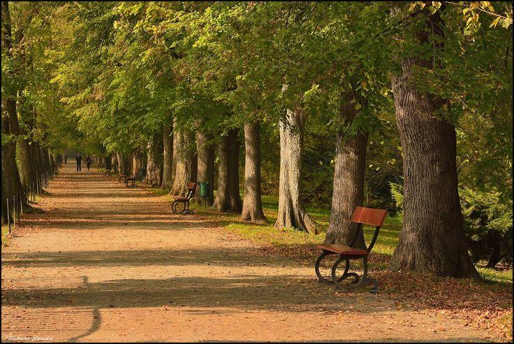 Kroměříž - podzim v zámeckém parku
