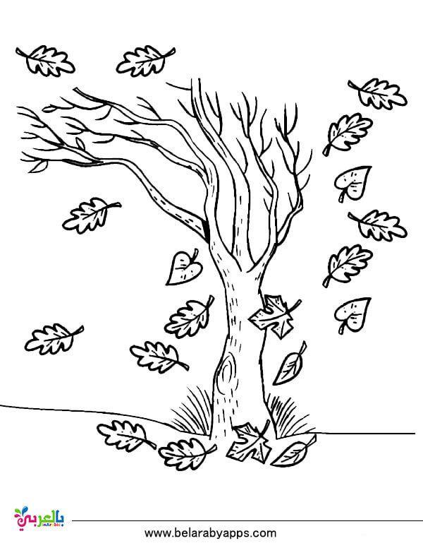 رسومات للتلوين عن فصل الخريف جاهزة للطباعة 2020 بالعربي نتعلم Tree Coloring Page Christmas Tree Coloring Page Coloring Pages