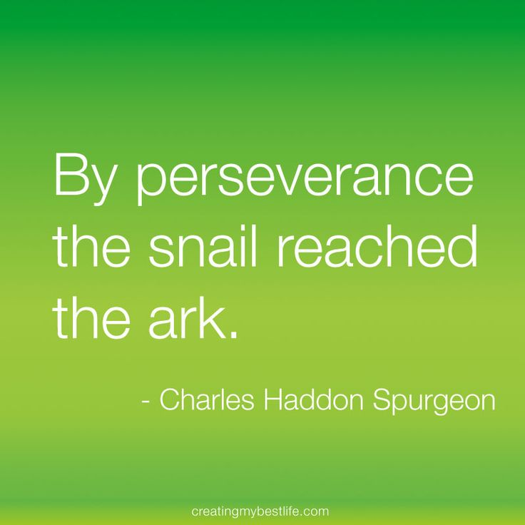 Quotes On Life Lessons For Teenagers: Best 25+ Scripture On Perseverance Ideas On Pinterest