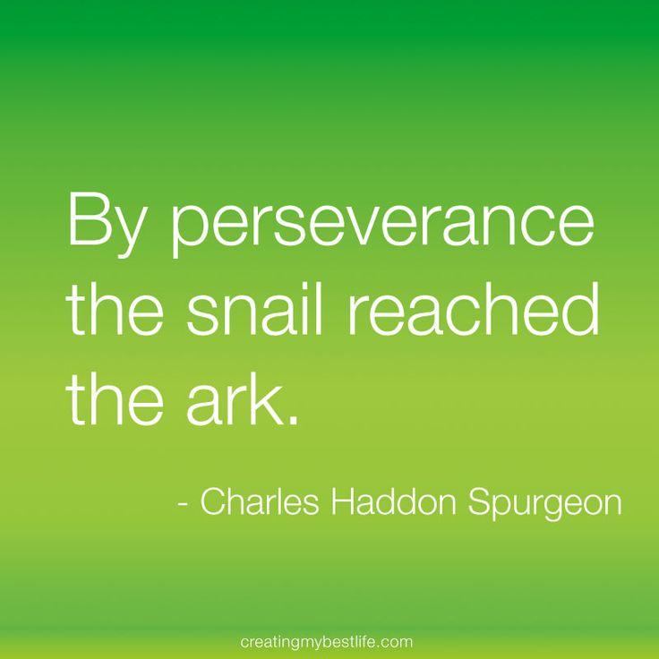Best 25+ Scripture On Perseverance Ideas On Pinterest