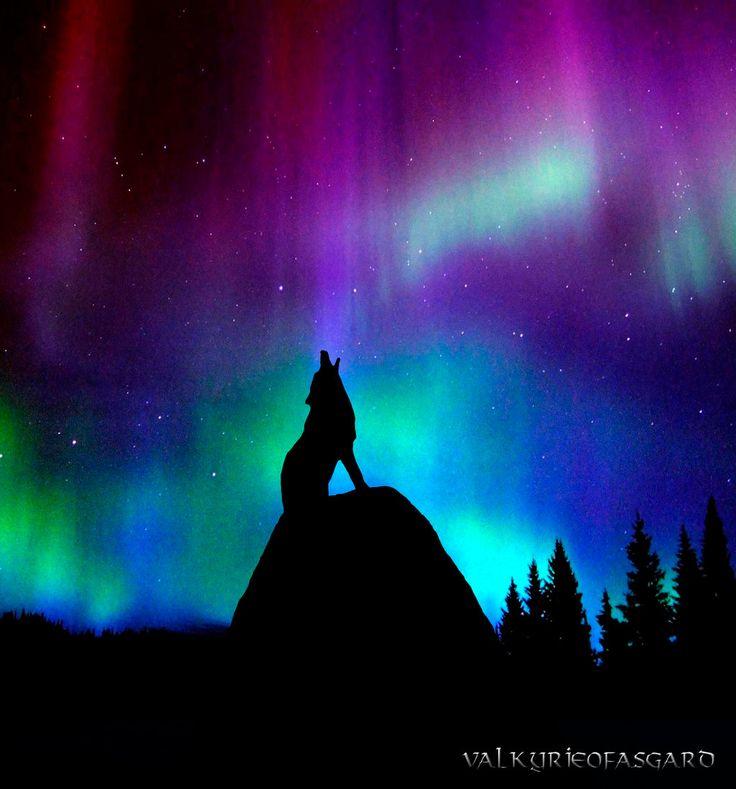 Wolf and Aurora by valkyrieofasgard.deviantart.com on @deviantART
