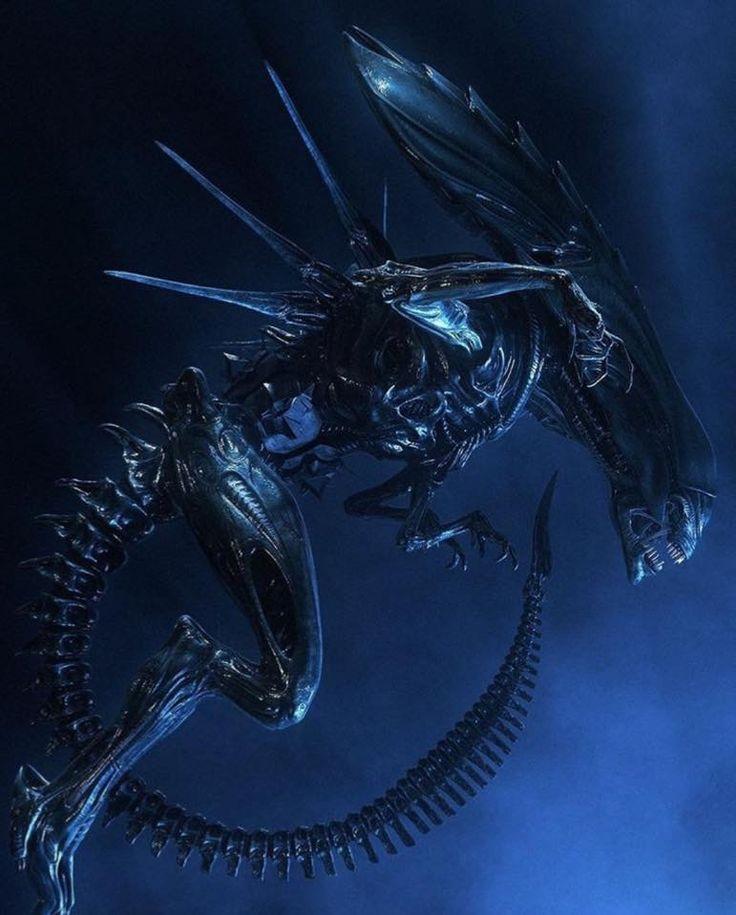 Aliens   Alien, Alien vs, Alien vs predator