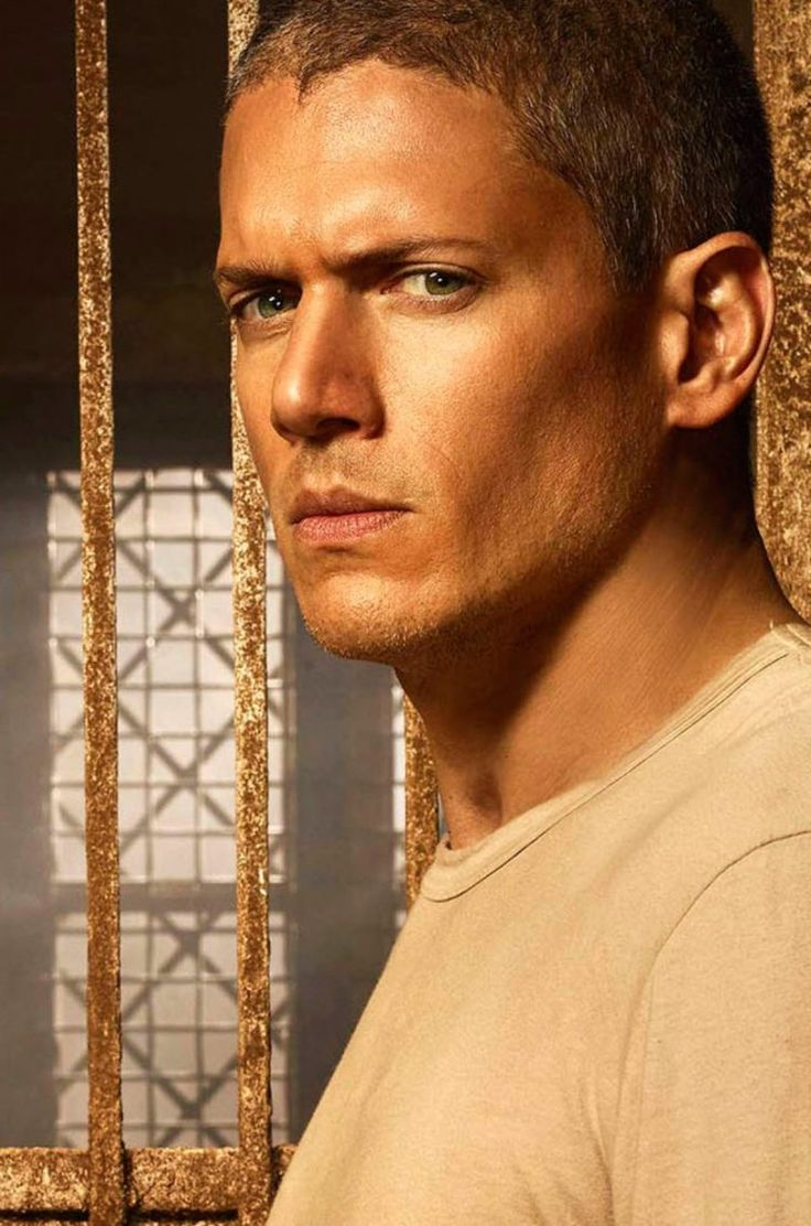 wentworth-miller-prison-break-sequel-michael-scofield-season-5-750x1134.jpg 750×1.134 pixels