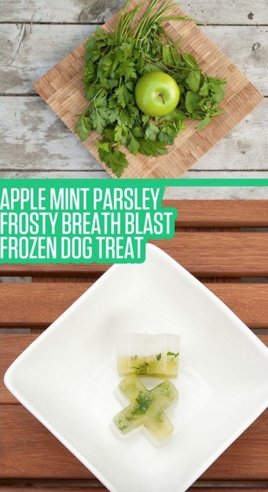 Frosty Breath Blast Dog Treat For Bad Breath