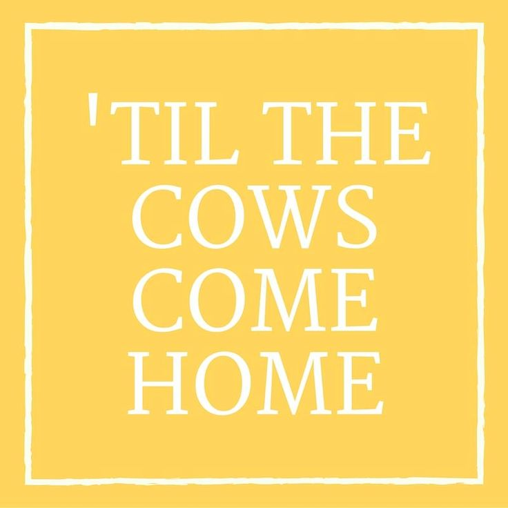 'Til the Cows Come Home - 24 Phrases Only Southerners Use - Southernliving. Settle in, because whatever we're talking about is going to take all day. Cows aren't known for their speed, and they are usually out and about, wandering until feeding time. Farmers know that if you do something 'til the cows come home, it's going to take all day.