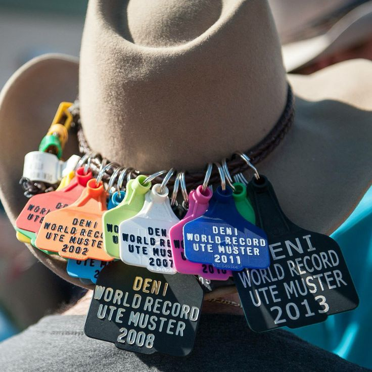 Deni Ute Muster cattle tags