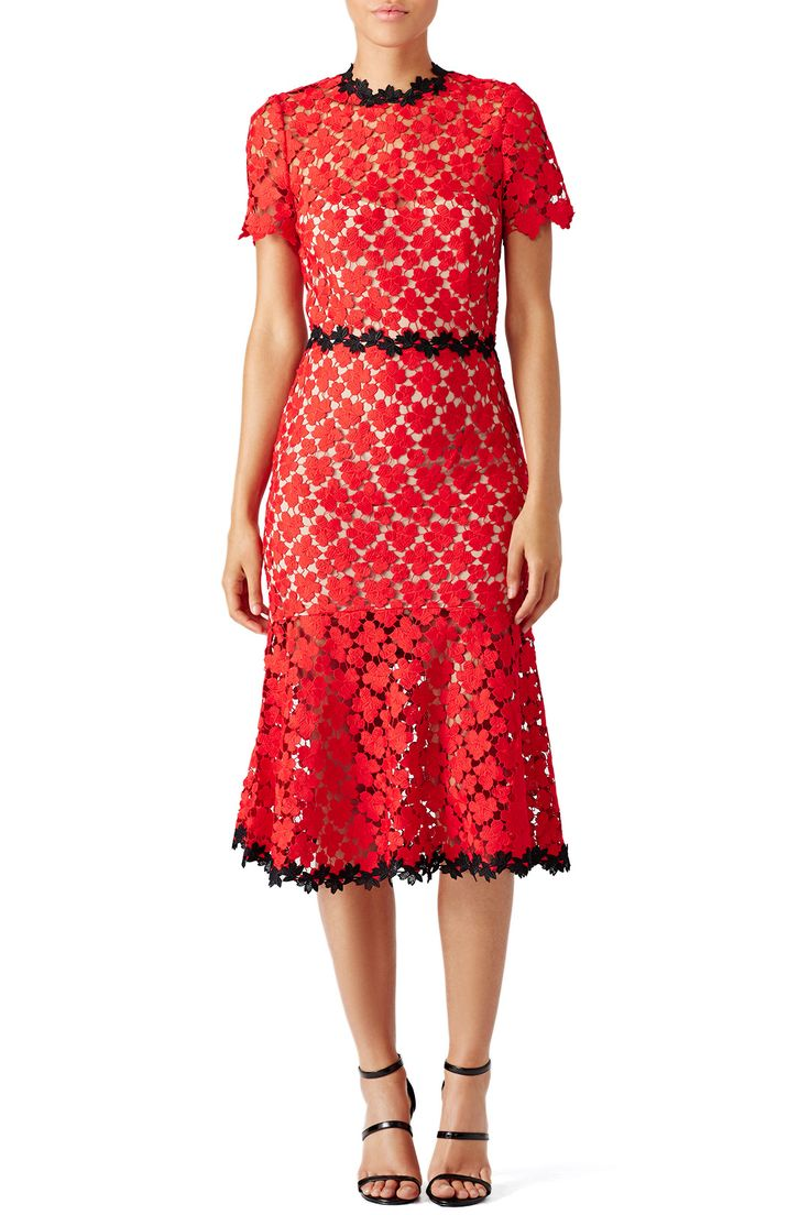 Rent Cherry Lace Midi Dress by Jill Jill Stuart for $50 - $85 only at Rent the Runway.