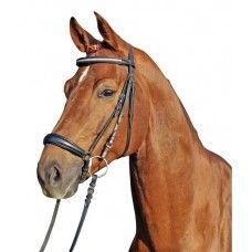 Ruitersport shop in rijkleding en paarden artikelen. Pardenshop is de online paardenwinkel van Nederland met goedkope kwaliteits ruitersportartikelen met snelle levering en lage verzendkosten.
