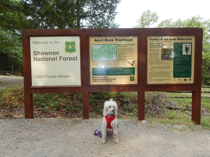 Garden of the gods shawnee national forest trip advisor