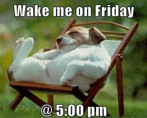 Sleep, Mondays And Happy