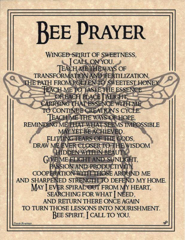 BEE Prayer Shaman Animal Spirit Poster Page 8 1/2 X 11