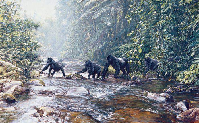 Fleeing Rwanda - Gorillas - Limited Edition Giclee Prints by John Banovich
