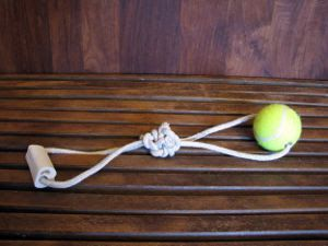 7 DIY Dog Toys --this page is not mobile-user friendly, but good info!