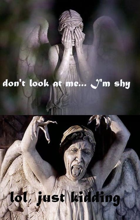 Hahahaha: Doctorwho, Doctors Who Weeping Angel, Just Kids, Dr. Who, I'M, So Funny, Funny Statues, Weeping Angels, Angel Statues