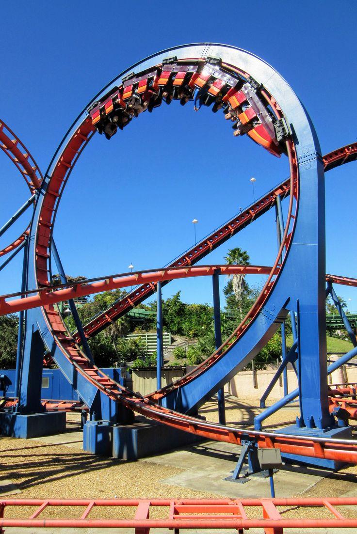 25 best ideas about busch gardens tampa bay on pinterest - Busch gardens tampa roller coasters ...