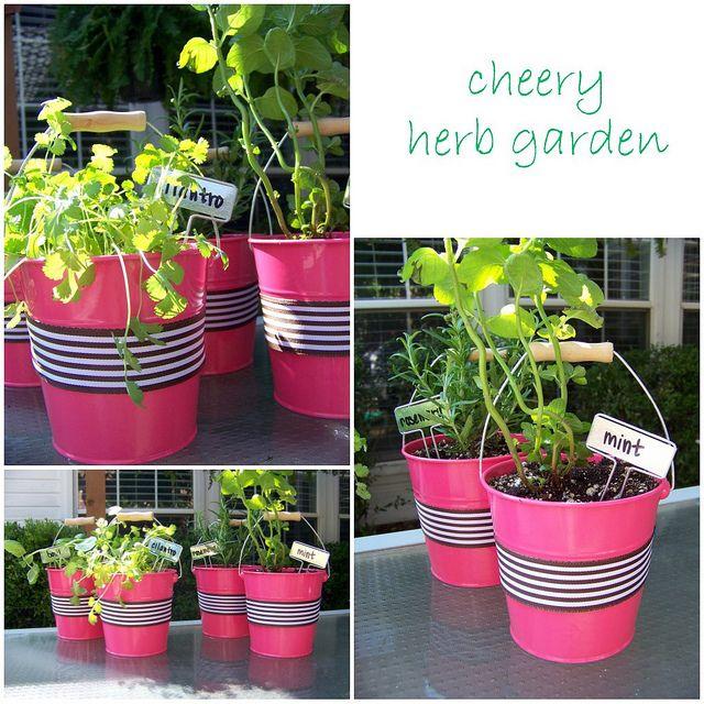 Kitchen Herb Garden Design: Best 25+ Kitchen Herb Gardens Ideas On Pinterest