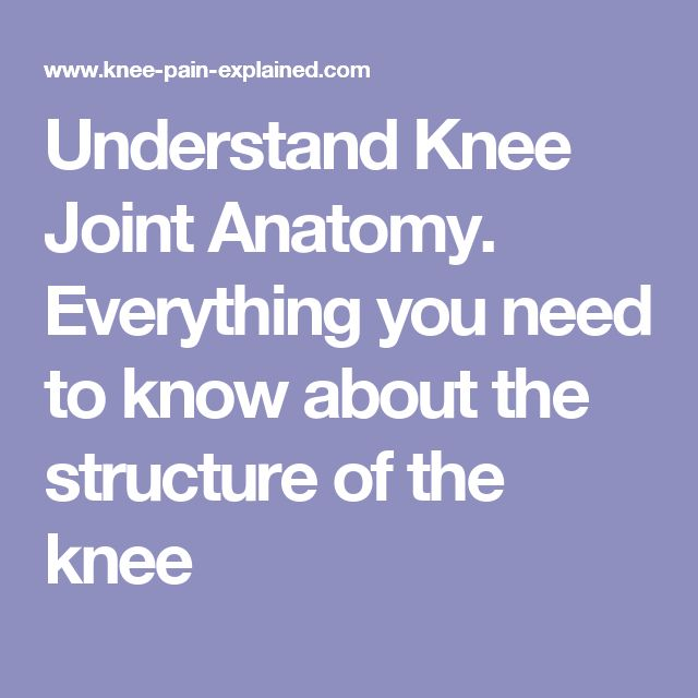 Understand Knee Joint Anatomy.  Everything you need to know about the structure of the knee