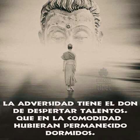#Mundo alternativo.. reflexiona. ..#vientos del alma#