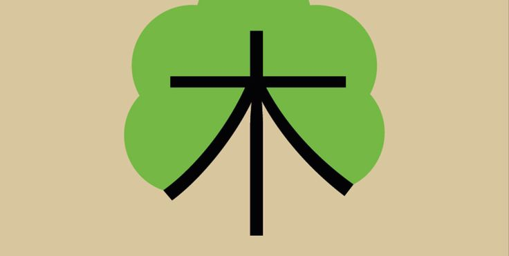 CHINEASY: THE FUN, ILLUSTRATED WAY TO LEARN CHINESE